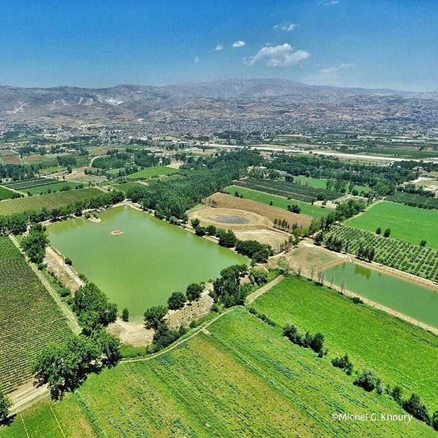 Fresh Sunday @livelovebekaa by our pilot @michokhoury (Bekaa valley)