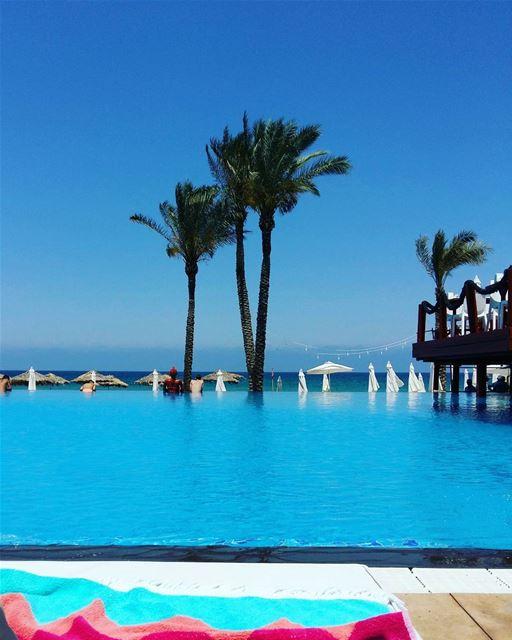 🏝💙 lebanon photooftheday instapicture nature instanature sunny... (Janna Sur Mer)