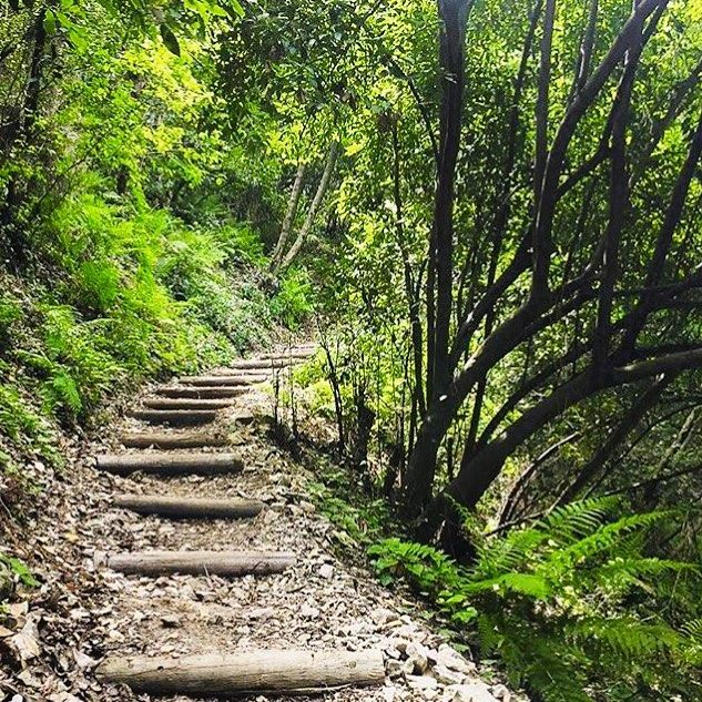 stairstoheaven greenworld amazingplace amazingview lebanon kesrwen ... (Chouwen)