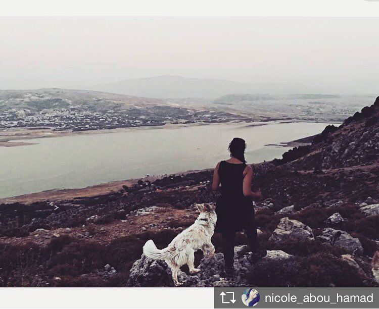 Repost from @nicole_abou_hamad 'Leave only footprints 🐾 lyra 💙 ... (Saghbîne, Béqaa, Lebanon)