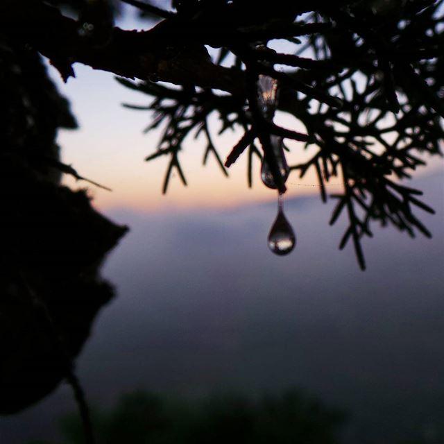 sap nikontop_ nikonworld bns_sky bns_sunset naturelovers ... (Beit Ed-Deen, Mont-Liban, Lebanon)