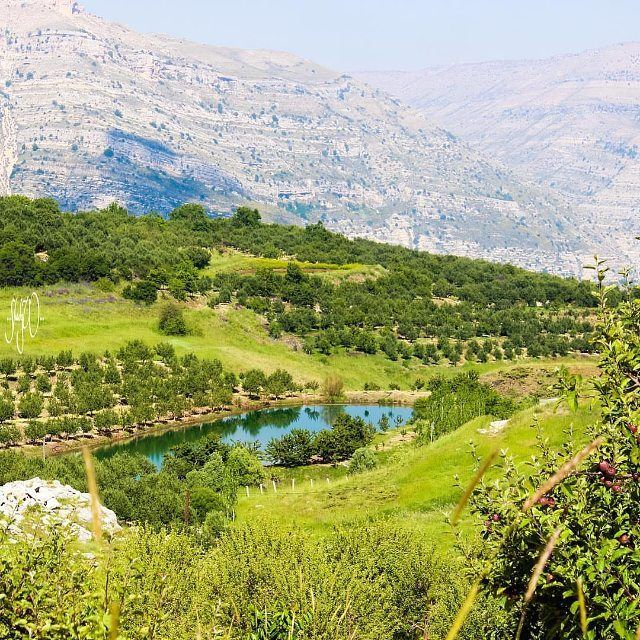 Spring is not over yet @livelovelaklouk by @shadyw (Laklouk - Lebanon)