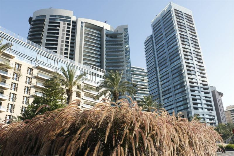 An oasis of modernity... oasis palm inthecity city zaytounabaybeirut ... (Zaitunay Bay)