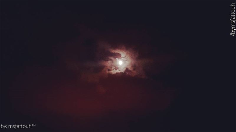 """""""The moon is at her full, and riding high, floods the calm fields with..."""