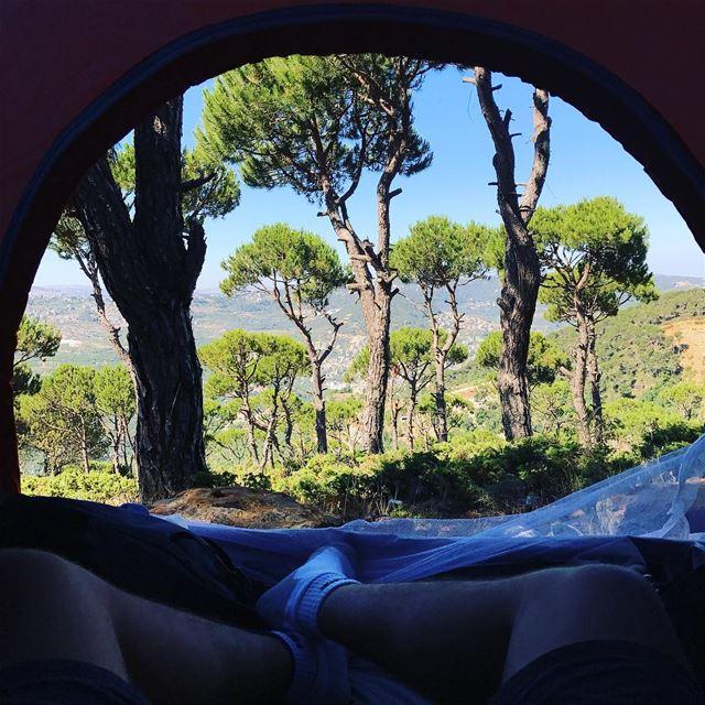 Waking up to this🏕 (Baskinta, Lebanon)