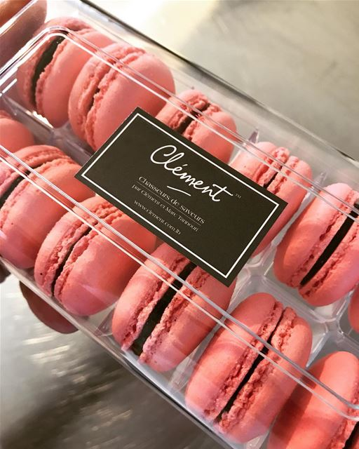 Macarons Framboises 😋😋 livelovefood livelovebeirut yummylebanon ...