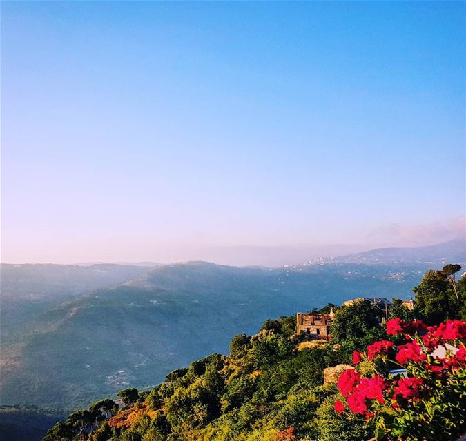lebanon beirut bhamdoun cherry cherryblossom hotel landscape ... (Cherry Blossom Boutique Hotel)