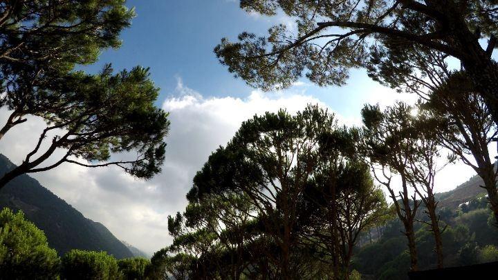 jezzine lebanon timelapse sun sky forest trees mountains ... (Jezzine District)
