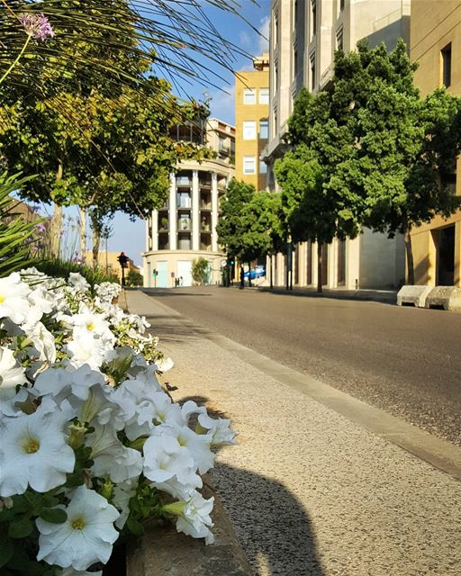 Beirut streets on Sundays..In the summer..In July..🌿💙🌿When running... (Downtown Beirut)