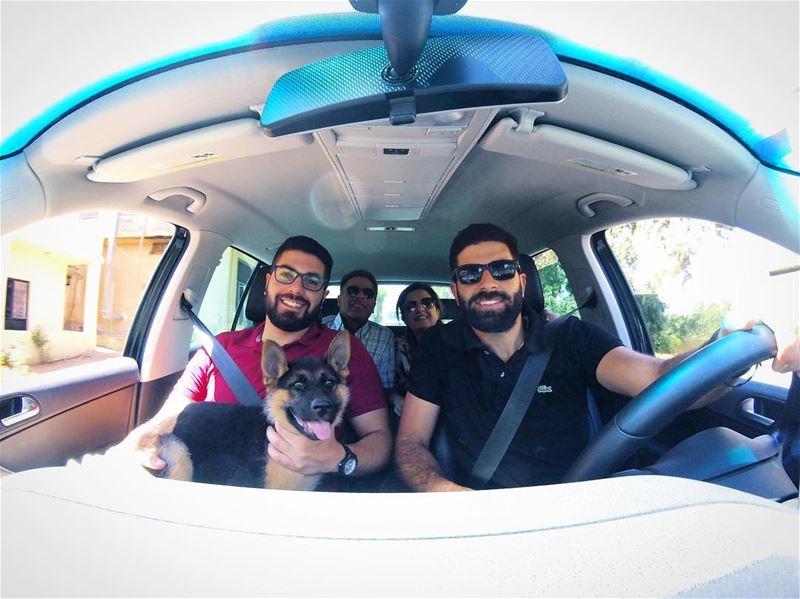Road trip 🚙 fam 👨👩👦👦🐶🇱🇧