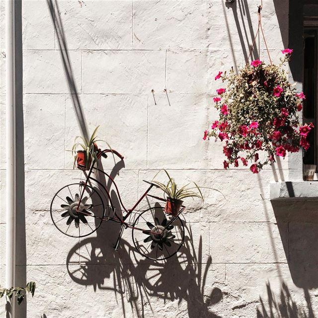 Notice the details 🌺 Beirut detail iamatraveler....- [ ] vsco... (Tyre, Lebanon)
