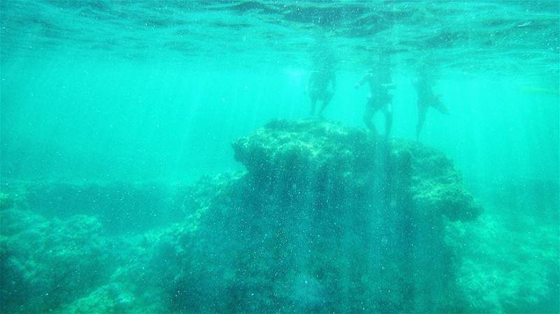 The wonders of the deep blue 💙 (Helweh)