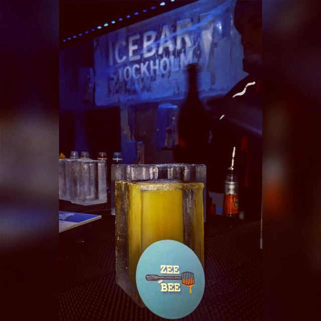 The Bee 🐝 and her ice ❄️ drink...... ice zeethebee zeetravels ... (Ice Bar Stockholm)
