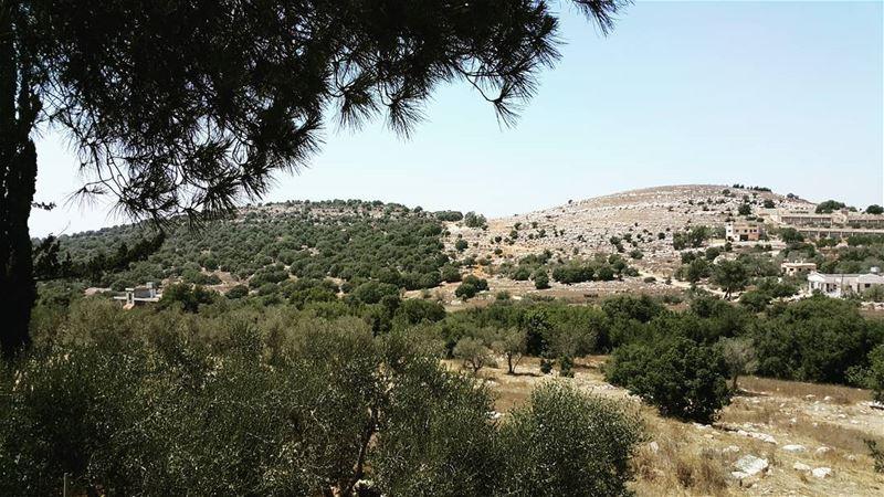 yaroun yarounday nature lebanoninapicture bestofleb southlebanon ...