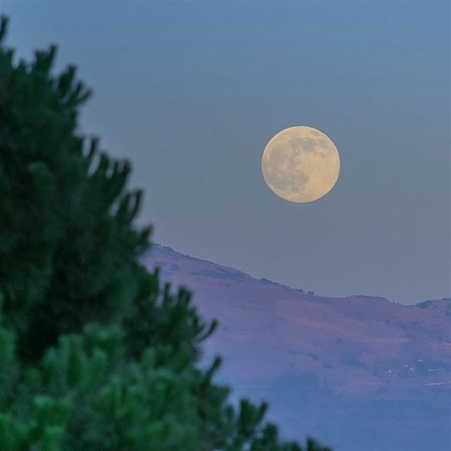 Fly me to the moon🚀 (Broummâna, Mont-Liban, Lebanon)