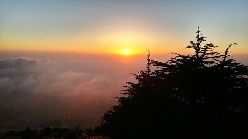 Mountain view 🌅... (Falougha, Mont-Liban, Lebanon)