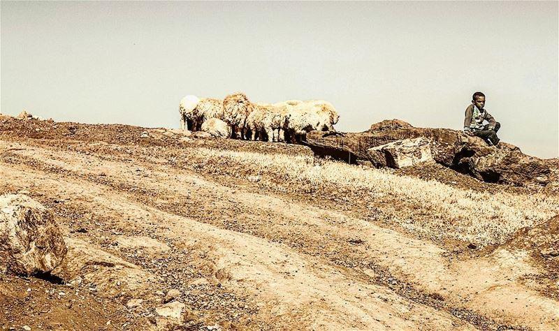 lebanon mountains life simplelife childhood portraits beautifullife... (Mount Sannine)