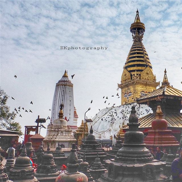 Love does not dominate; it cultivates. * hdr_photogram hdr_professional... (Kathmandu, Nepal)