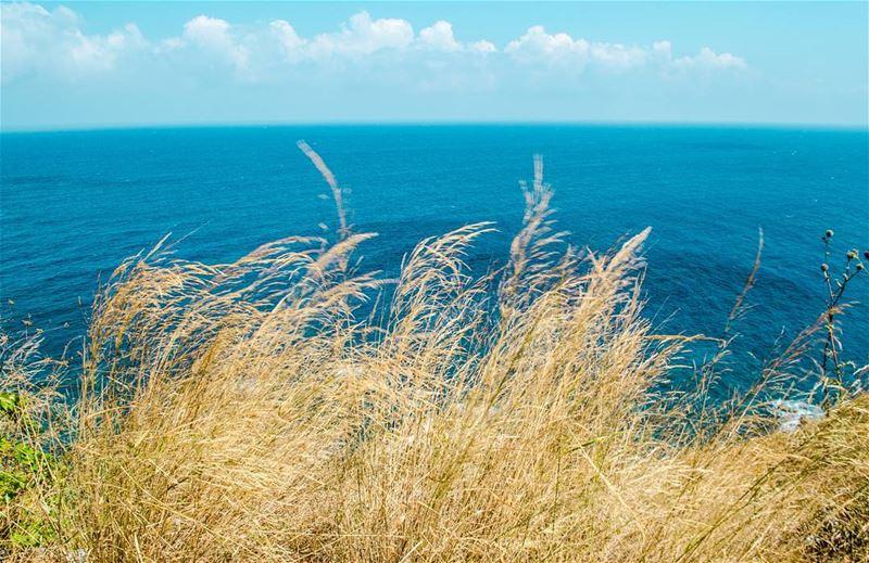 morning by the sea 💙💙.............. Lebanon ... (Chekka)