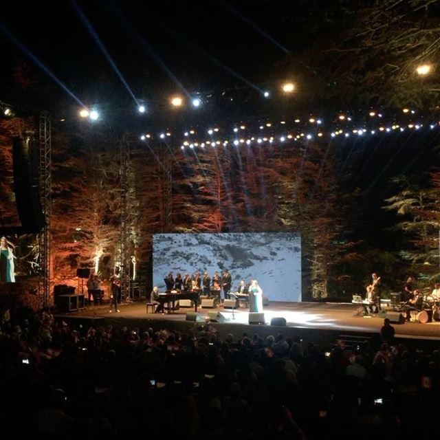 The cedars of TANNOURINE !!! tannourine tannourinecedarsnights ... (Tannourine Cedars Nights ليالي أرز تنورين)
