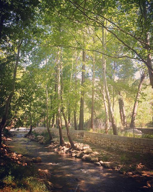 lebanon kfarhelda river nature naturelovers natureaddict ... (Kfarhilda, North)