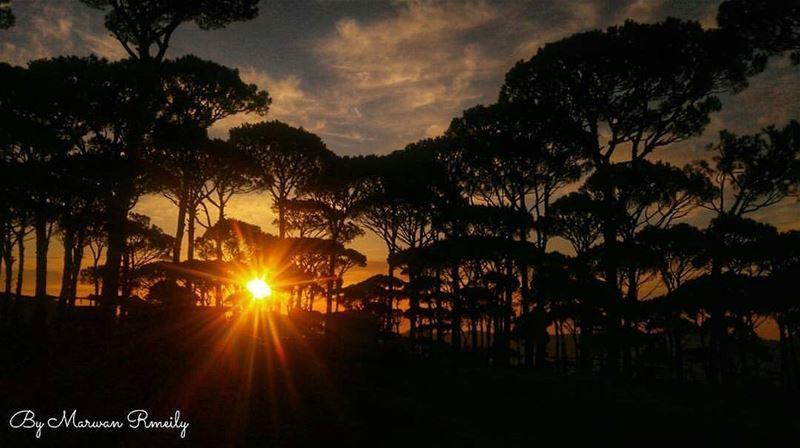 Goodnight Lebanon ❤ From Ras Al Matn by @marwan_rmeily 😍❤😍❤😍❤😍❤😍 ...