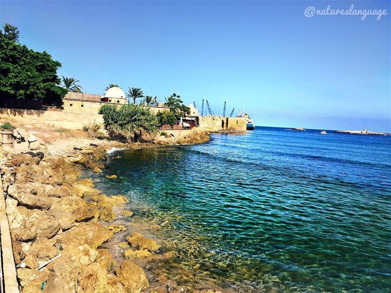 Stunning view of sidon's sea castle and zire island 🌴 ..... saida ... (Sidon Sea Castle)