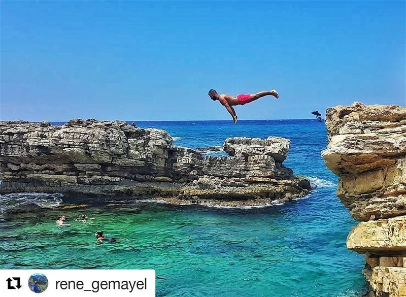 Feel free and just do it Repost @rene_gemayel (@get_repost)...