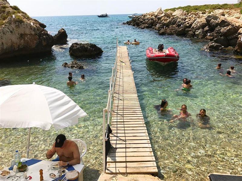 Lunching in the sunshine & sea 🦀🐠☀️ lebanon beach sunshine sea salt ... (Al Jammal Restaurant)