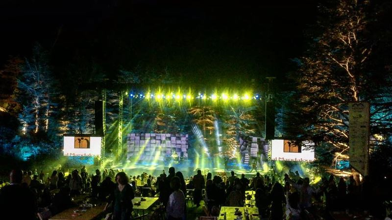 Party in the forest 🌲🎶🌲🎶🌲... (Arz Tannoûrîne)