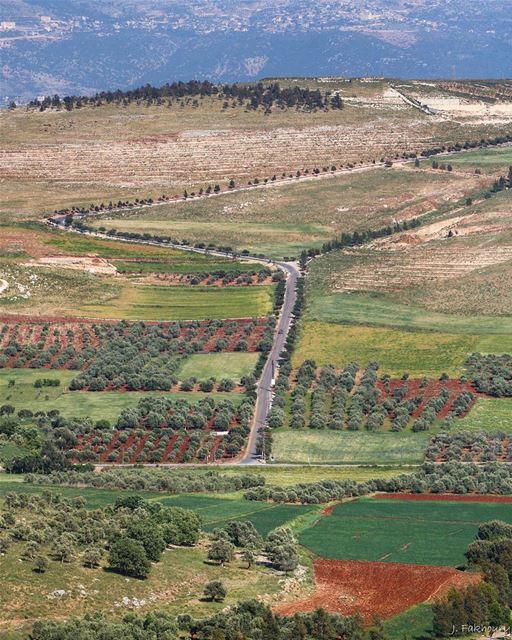 Our type of field roads @livelovemarjeyoun (Marjayoûn, Al Janub, Lebanon)