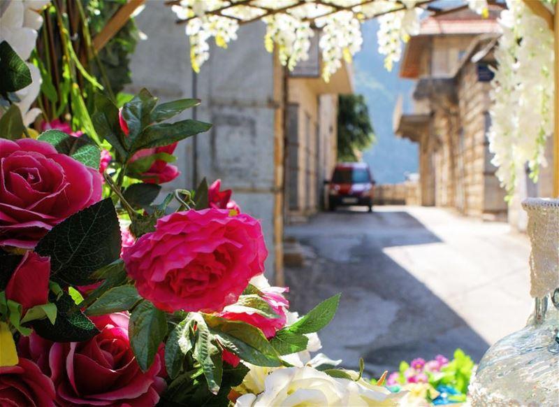 town aesthetics 🌺 (Douma, Liban-Nord, Lebanon)
