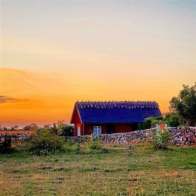 ❤Öland❤ igsweden ig_lebanon öbilden rebel_scapes bns_sunset ... (Gillberga Öland)
