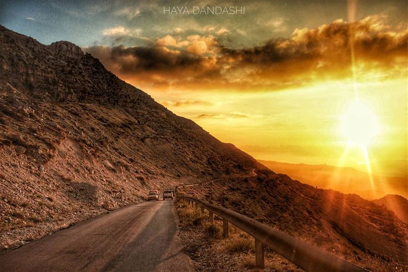 hayadandashi all copy rights reserved©2017_____________________ canon... (North Governorate)