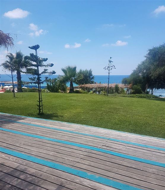 Blue.. lebanon  beach  summer  sun  sea  nature  liban  libano  travel ...