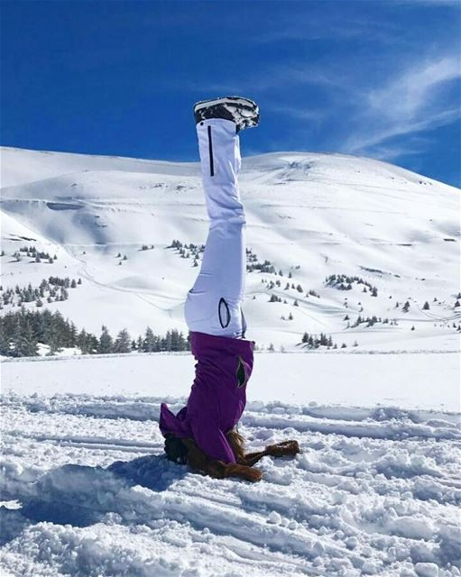 Enough with the heat and bring back winter!!!  themountaineers  snowboard ... (The Cedars of Lebanon)