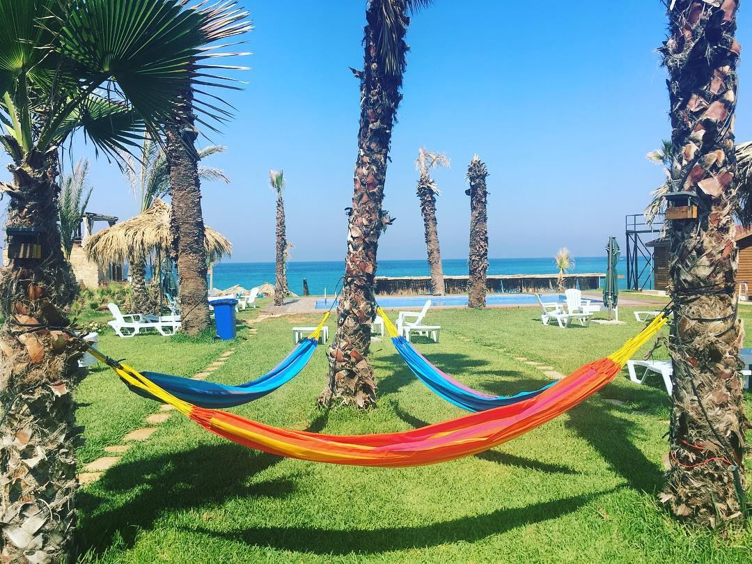 Summer time is always the best of what might be 🌴🌻🌞 @seascapebatroun ... (Seascape Batroun)
