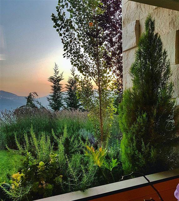 My sunset view sunset sunset_hub green home livingroom view ... (Brummana)