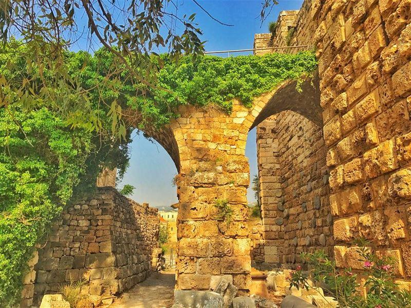 ... (Byblos Castle)