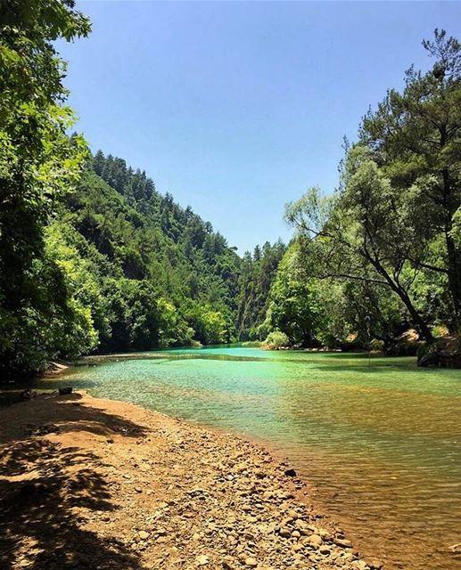 morning lebanon insta_lebanon naturephotography naturelovers ... (جنة شوان - نهر ابراهيم)