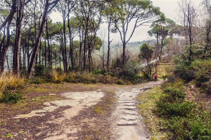 Arsoun__________________________________________... (Arsoûn, Mont-Liban, Lebanon)