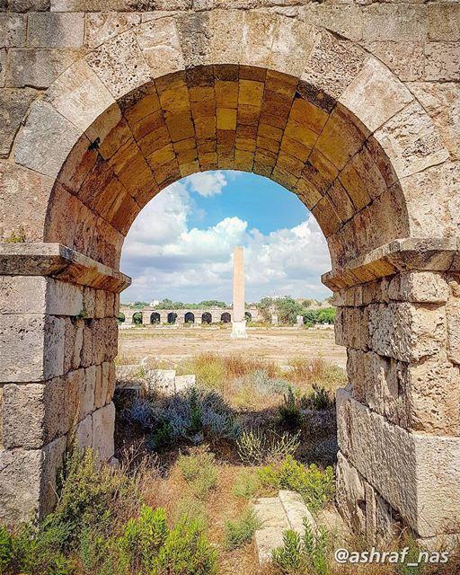 ومن أنا لا تسل سمراء منبتهافي ملتقى ما ألتقت شمس وشطآن...لي صخرة علقت بال (Roman ruins in Tyre)
