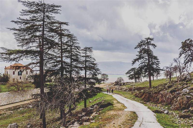Ammiq__________________________________________... (`Ammiq, Béqaa, Lebanon)