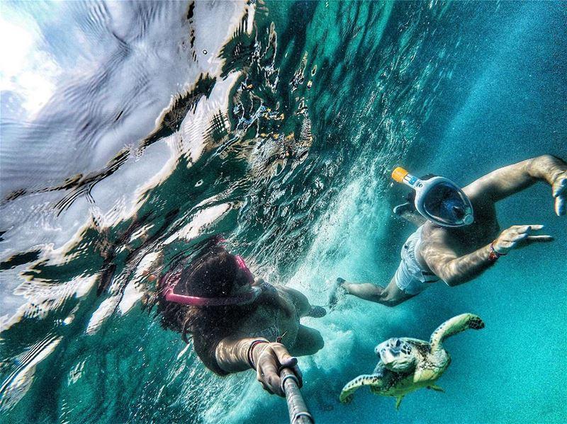 Isn't life better under the sea? ExploreLebanonWithDecathlon. . By @ak.r (Batroûn)
