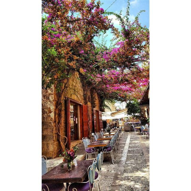 📍🇱🇧 byblos lebanon tourist travel traveller visitlebanon ... (Byblos, Lebanon)
