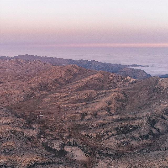 That's how we woke up today morning @soukelakel Tannourine's Summit Rush ... (Tannourine Cedars Nature Reserve)