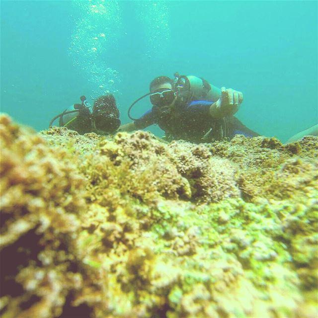 scubadiving scubadive scubalove miramarbeach miramar instalebanon ...