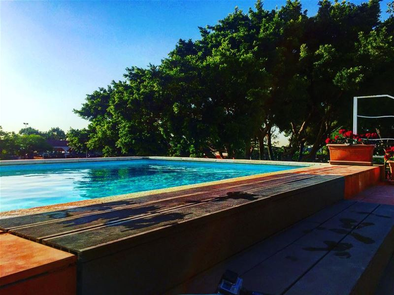 👙🏊 lebanesebucketlisters pool summer nature lebanon tyre ... (Al-Yasmine Guesthouse)