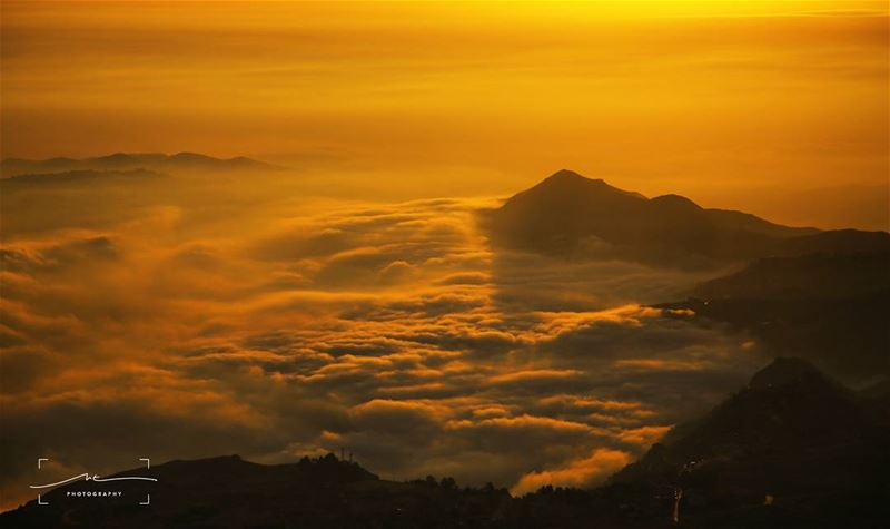 On top of a golden cloud 🌄 (Cedars of God)