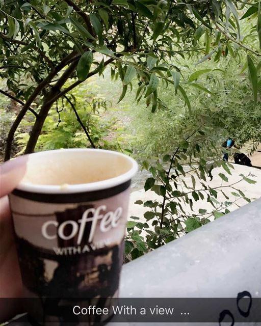 coffeetime morning lebanon summer veiws river ...